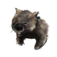 http://www.carbonatedink.com/files/gimgs/th-25_wombat.jpg